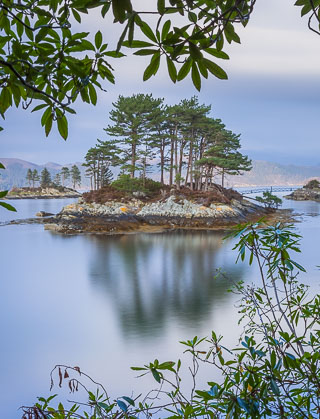 Banks of Loch Carron, Lockalsh, Scotland, by Andrew Jones